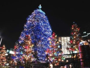 Стихи о елочке, новогодней елке