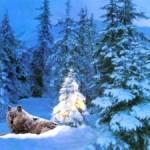 Новогодние стихи про зиму фото