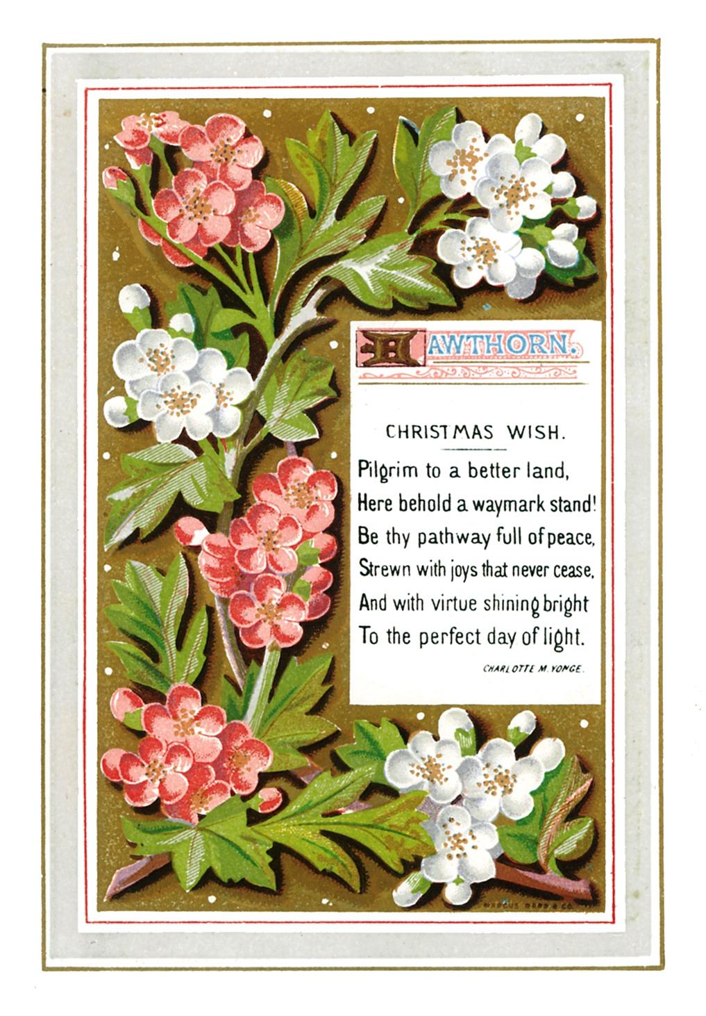 Поздравительные открытки на английском языке фото