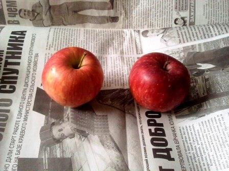 два яблока, удаляем плодоножку