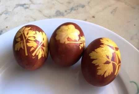 окраски яиц луковой шелухой и растениями