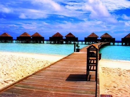 Покупать туры на Мальдивы на Новый год