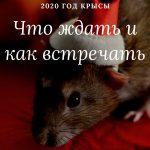 2020 год Крысы что ждать и как встречать