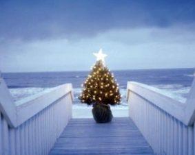 Новогодние песни о елочке