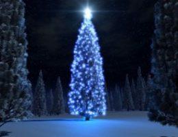 Рождественская елка – история и легенды