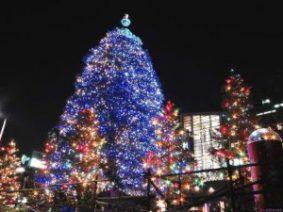 Миниатюра к статье Стихи о елочке, новогодней елке
