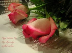 Валентинки на английском языке – стихи поздравления