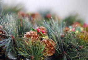 Загадки к Новому году про елку